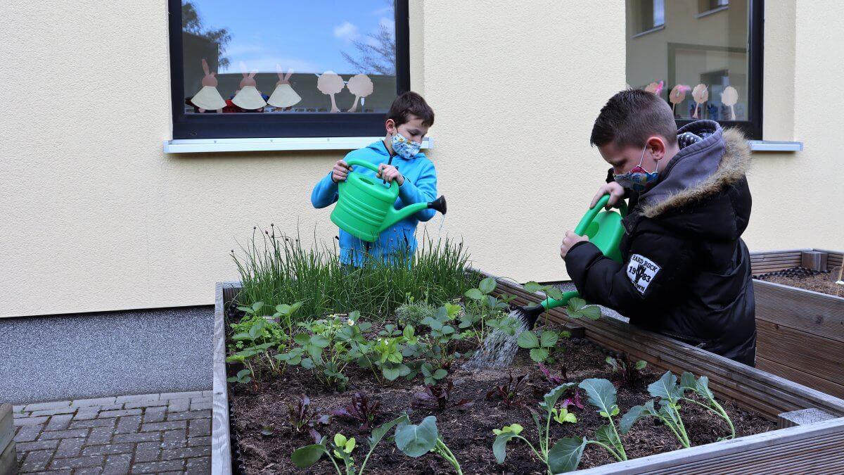 Zwei Jungen mit Maske gießen ein Hochbeet